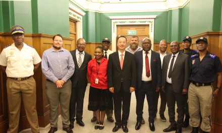 Public Safety MMCs Appear Before Portfolio Committee