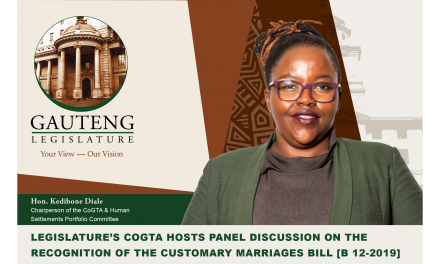 Recognition of Customary Marriages Bill [B12 -2019] Panel Discussion